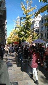Acción Stop desahucios Granada 15M enla puerta de Cajamar